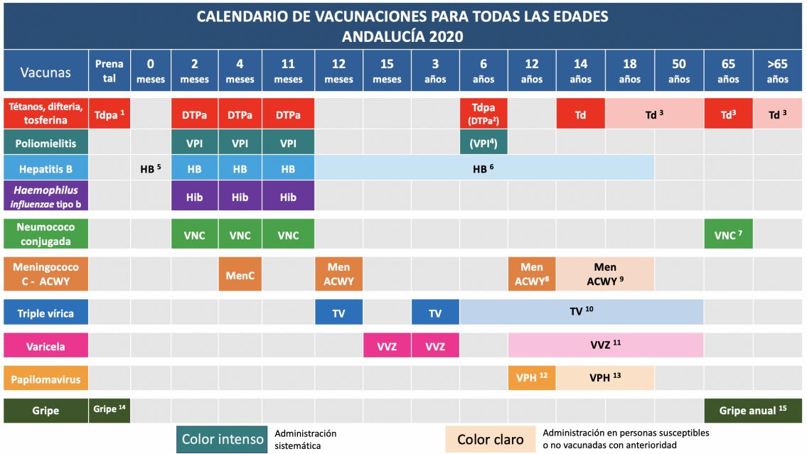 Calendario vacunal 2020: la vacuna tetravalente de la meningitis para 12 meses y 12 años, principal novedad