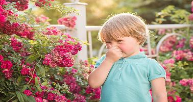 ¿Cuáles son los tipos de alergias más frecuentes en niños?