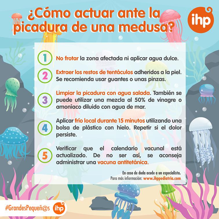 ¿Qué debes hacer si a tu hijo le pica una medusa este verano?